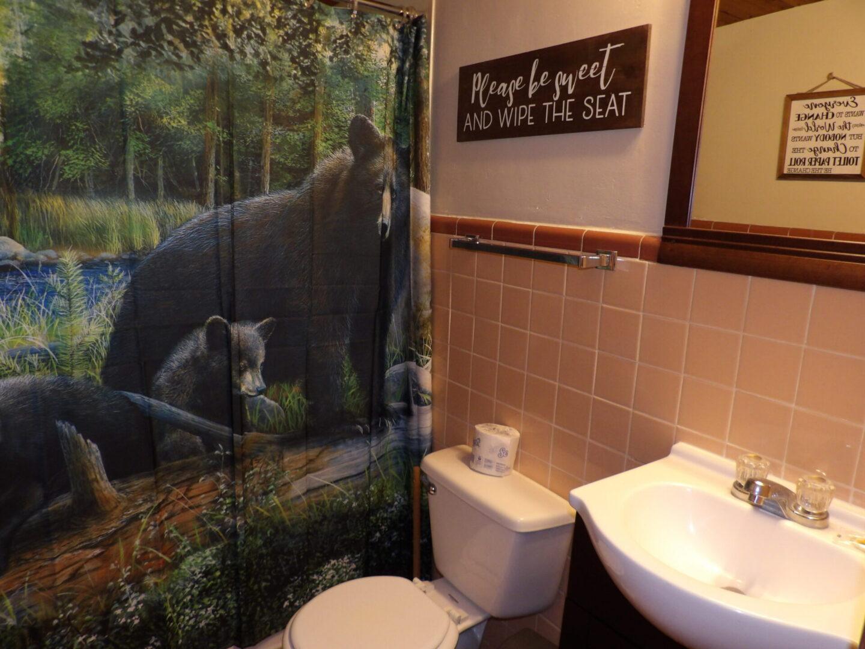 bathroom with bear-themed shower curtain