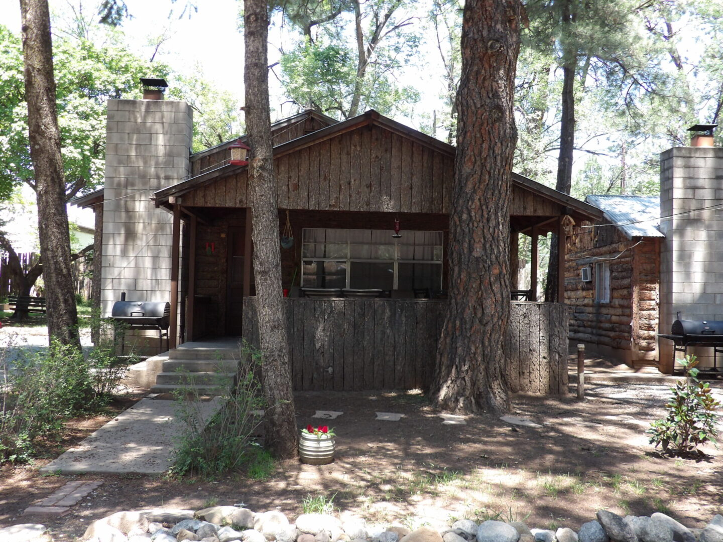 cabin in front of two pine trees