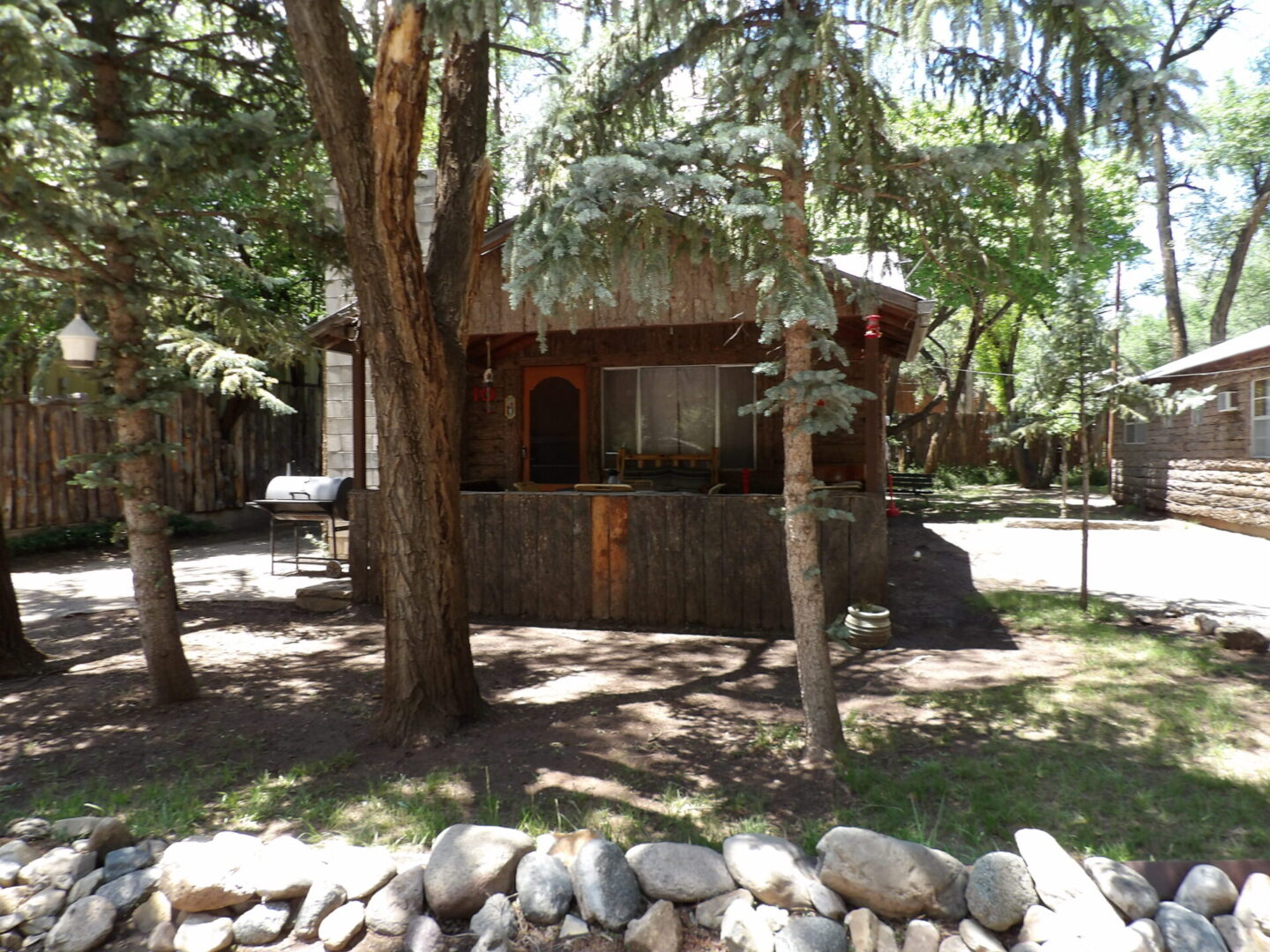 trees in front of a cabin