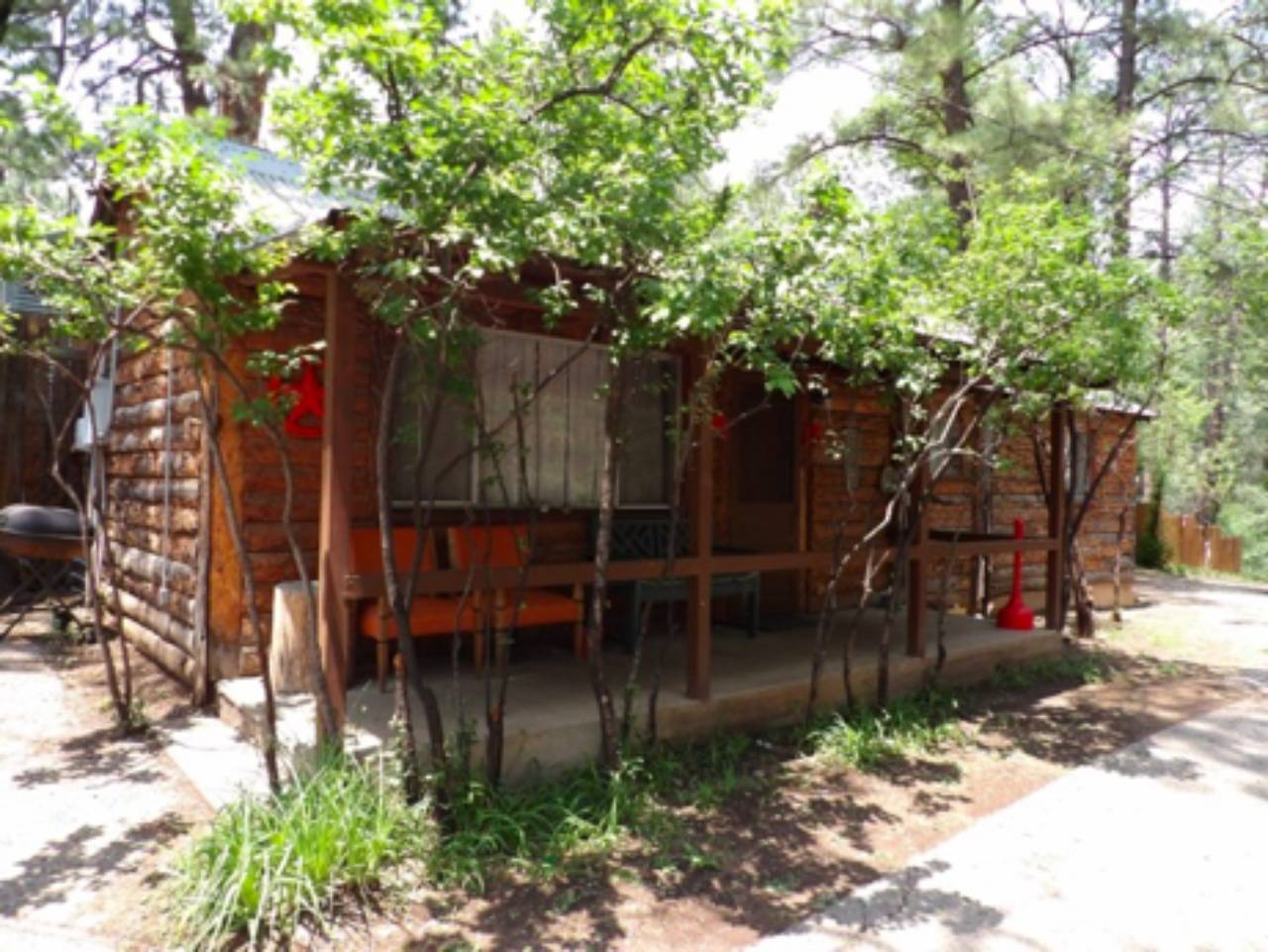 cabin patio with tree fences