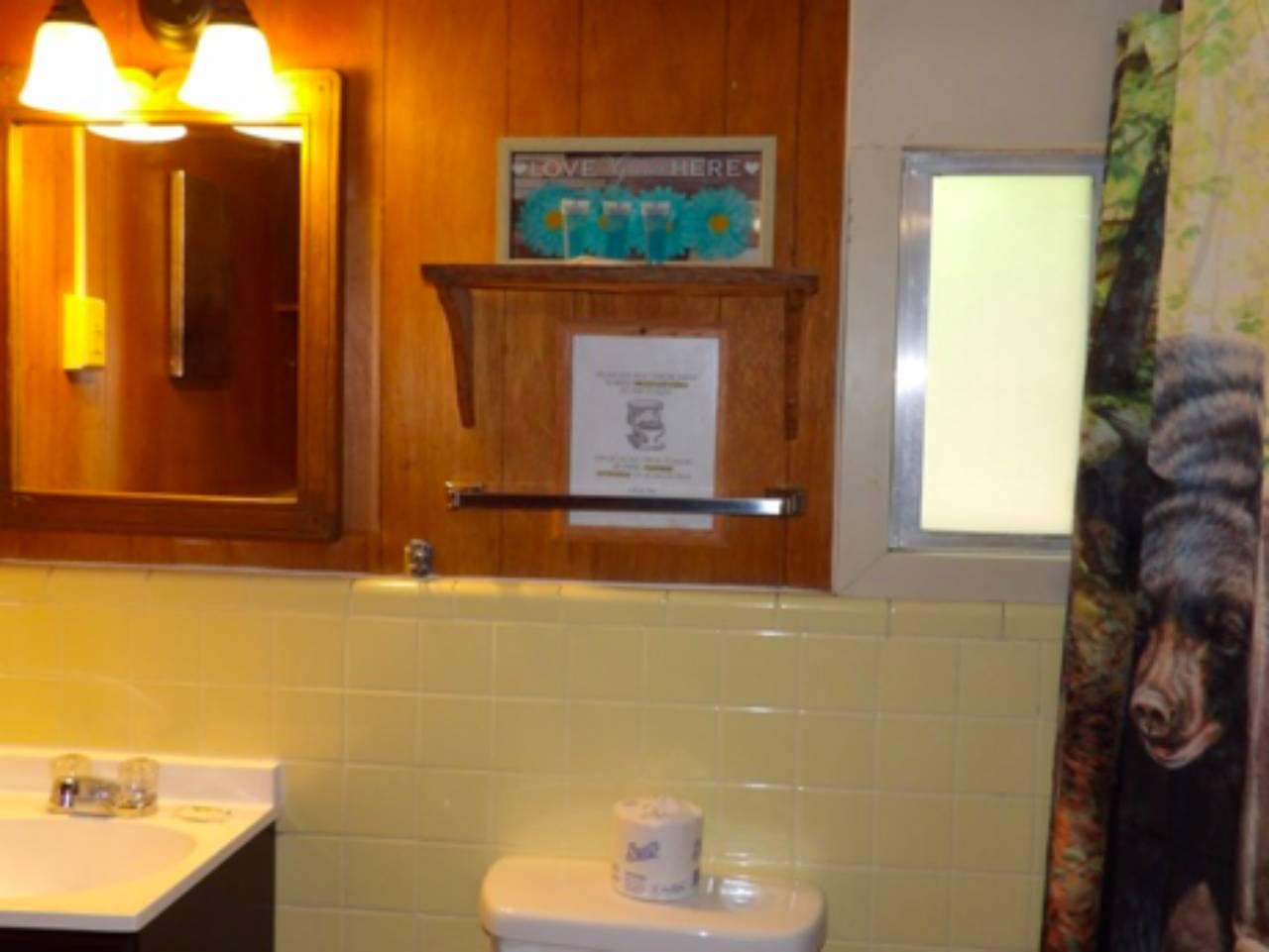 bathroom mirror, toilet, and lights